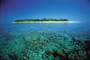 Lady Musgrave Coral & Island