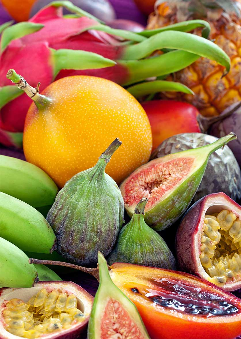 Tropical Fruit World a successful tourist attraction ...