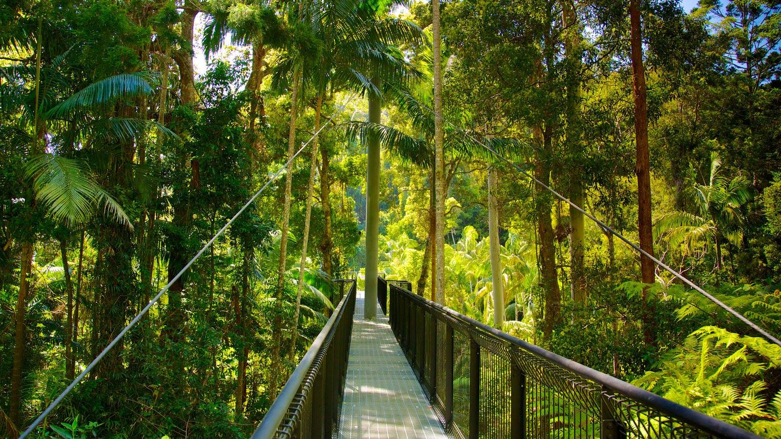 cheap budget things to do gold coast