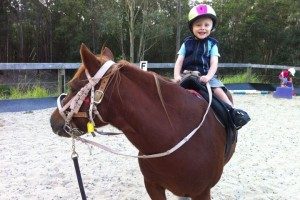 gold coast horse riding