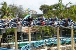 Best Rollercoasters at Sea World Australia