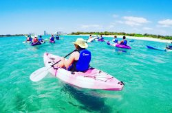 Australian Kayaking Adventures
