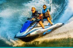 Position Vacant – Best friend of the Gold Coast tourism industry